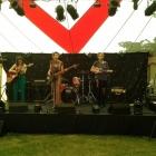Priory_Park_Festival _176